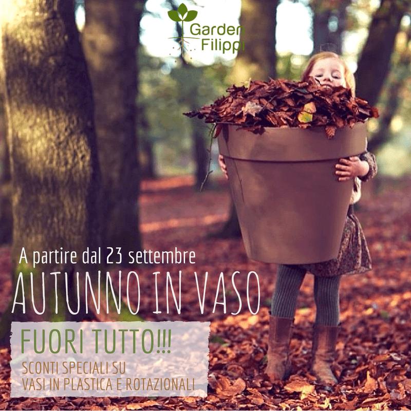 locandina promo autunno in vaso